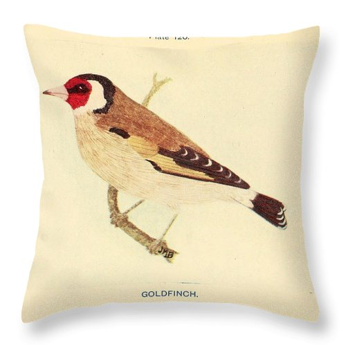 Goldfinch Throw Pillow featuring the painting Goldfinch by Philip Ralley