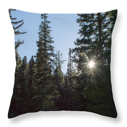 Landscape Throw Pillow featuring the photograph Good Afternoon Sunshine by Debra Powell