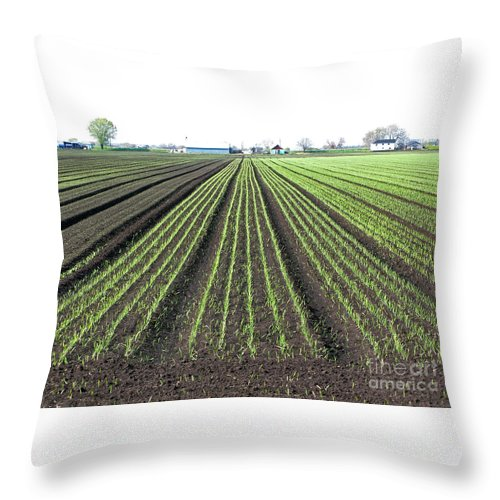 Farm Throw Pillow featuring the photograph Good Earth by Ann Horn