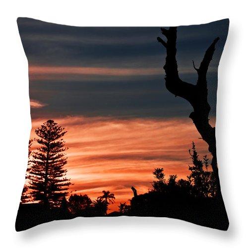 #sunset Throw Pillow featuring the photograph Good Night Trees by Miroslava Jurcik