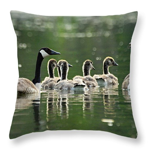 Photography Throw Pillow featuring the photograph Goose Family by Larry Ricker