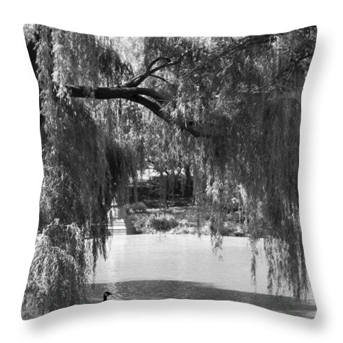 Canadian Goose Throw Pillow featuring the photograph Goose Pond by Breanna Calkins