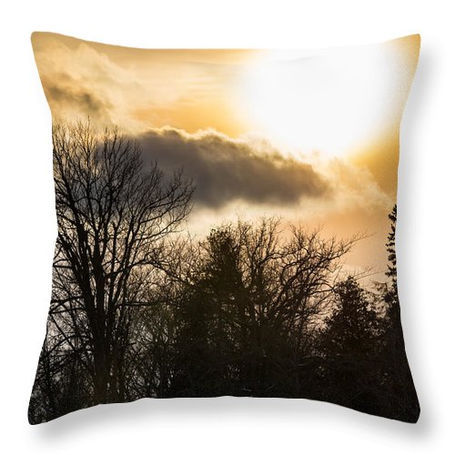Tree Throw Pillow featuring the photograph Gorgeous Sky by Cheryl Baxter