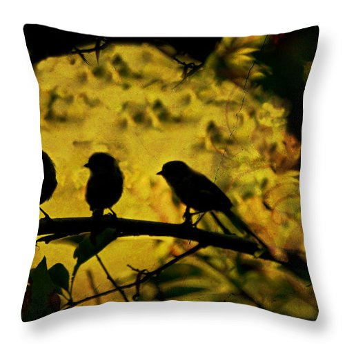 Gossip Throw Pillow featuring the photograph Gossipers by Angela Stanton