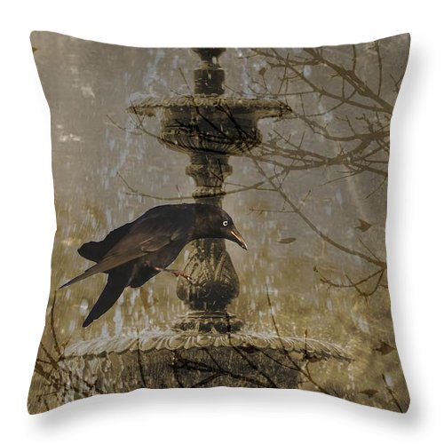 Crow Throw Pillow featuring the photograph Gothic Fountain by Suzanne Powers