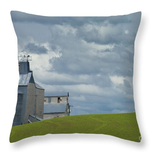 Farmland Throw Pillow featuring the photograph Grain Elevator by John Shaw