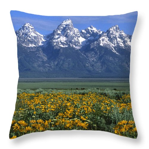 Grand Teton Throw Pillow featuring the photograph Grand Teton Summer by Sandra Bronstein