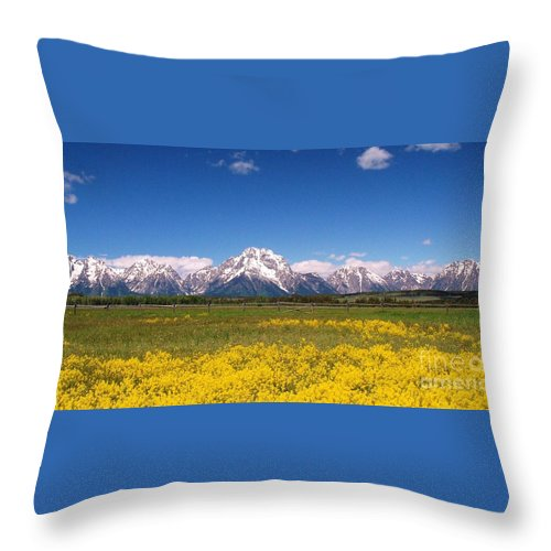 Grand Canyon Throw Pillow featuring the photograph Grand Teton Wildflowers by Allen Beatty