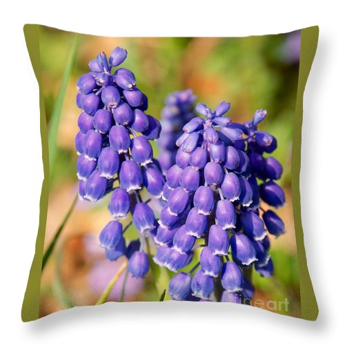 Flowers Throw Pillow featuring the photograph Grape Hyacinth by Mark Dodd