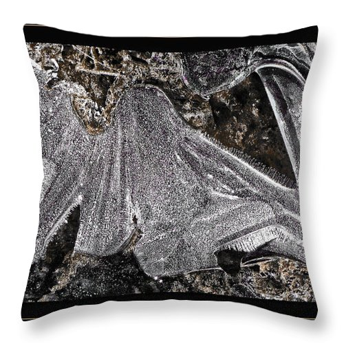 Ice Throw Pillow featuring the photograph Graphic Ice by Lucy VanSwearingen