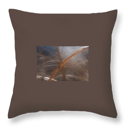 Grass Throw Pillow featuring the photograph Grass - Abstract 1 by Natalie Rotman Cote