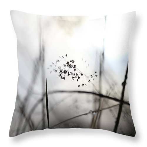 Abstract Throw Pillow featuring the photograph Grass Heavy With Raindrops by Ulrich Kunst And Bettina Scheidulin