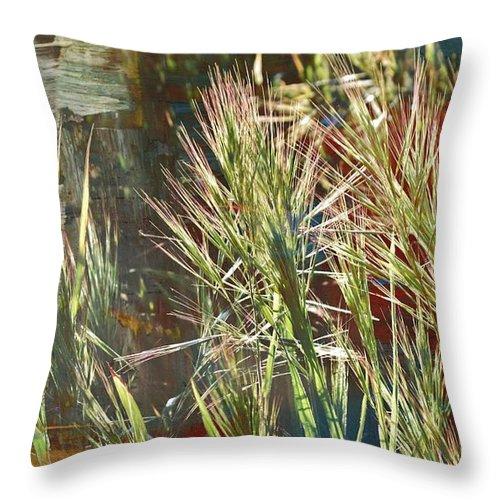 Close Up; Grass; Bright; Sunlight; Photoshop; Texture; Green; Light; Plants; Rural; Throw Pillow featuring the photograph Grass In Sunlight by Werner Lehmann