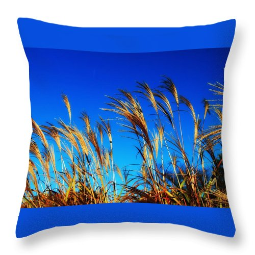 Landscape Throw Pillow featuring the photograph Grass In The Wind by Vicki Dreher