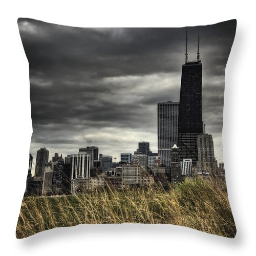 Chicago Throw Pillow featuring the photograph Grasses Along The Skyline by Margie Hurwich