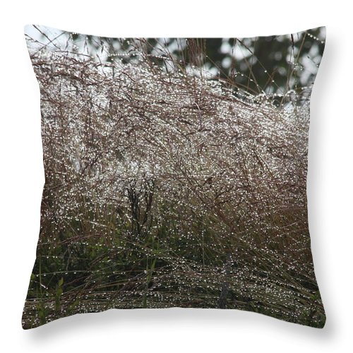 Abstract Throw Pillow featuring the photograph Grasses Glittering With Thousand Of Rain Drops by Ulrich Kunst And Bettina Scheidulin
