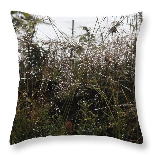 Abstract Throw Pillow featuring the photograph Grasses Glittering With Thousand Of Raindrops by Ulrich Kunst And Bettina Scheidulin