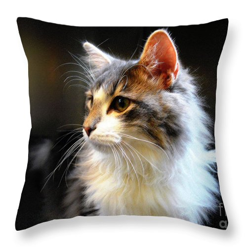 Cat Throw Pillow featuring the photograph Gray And White Cat by Catherine Sherman