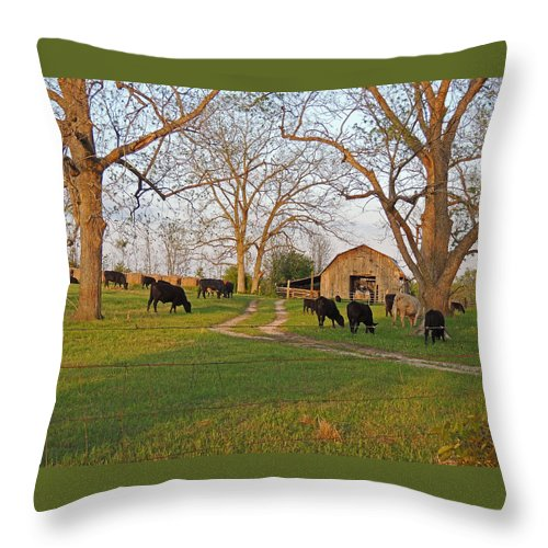 Cows Throw Pillow featuring the photograph Grazing by Marian Bell