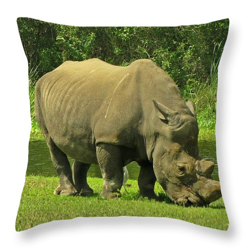 Rhinoceros Throw Pillow featuring the photograph Grazing Rhino by MTBobbins Photography