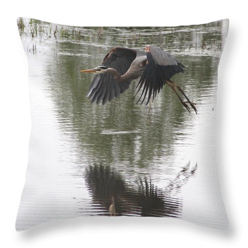 Bird Throw Pillow featuring the photograph Great Blue Heron by Angie Vogel