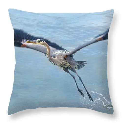 Great Blue Heron Throw Pillow featuring the photograph Great Blue Heron Take Off by Sandi OReilly