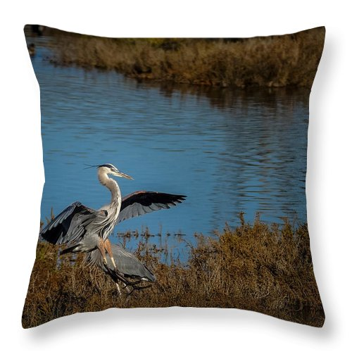 Animals Throw Pillow featuring the photograph Great Blue Landing by Ernie Echols