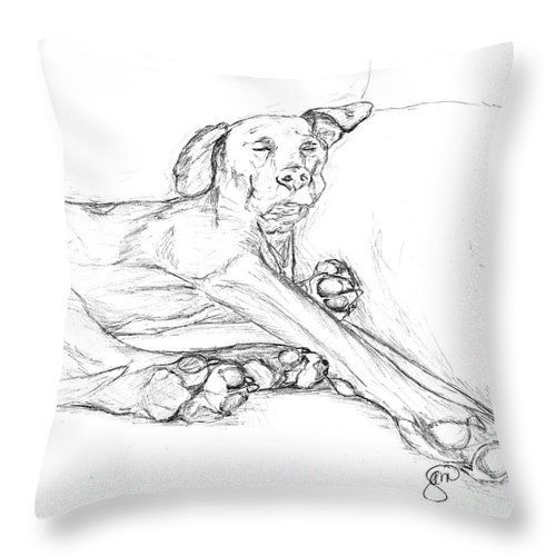 Pets Throw Pillow featuring the drawing Great Dane Dog Sketch Bella by Stacey May