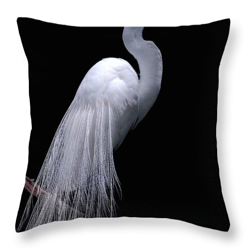 Egret Throw Pillow featuring the photograph Great Egret I by Donna Proctor