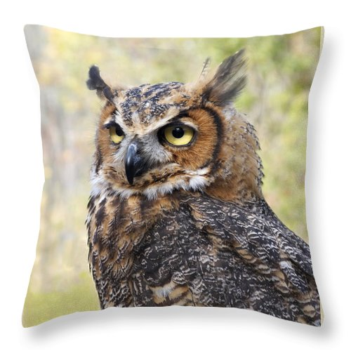 Owl Throw Pillow featuring the photograph Great Horned Owl by Ann Horn