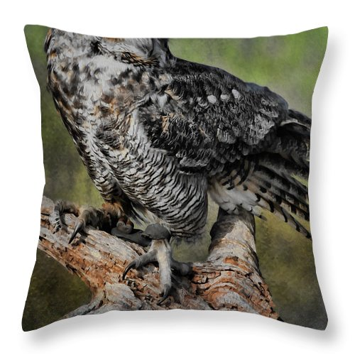 Owl Throw Pillow featuring the photograph Great Horned Owl On Branch by Deborah Benoit