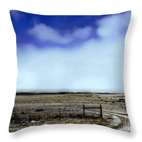 Color Photo Throw Pillow featuring the digital art Great Plains Winter by Tim Richards