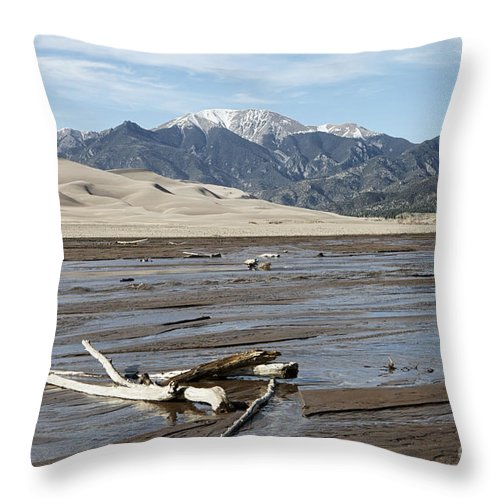 Landscape Throw Pillow featuring the photograph Great Sand Dunes Two by Erika Weber