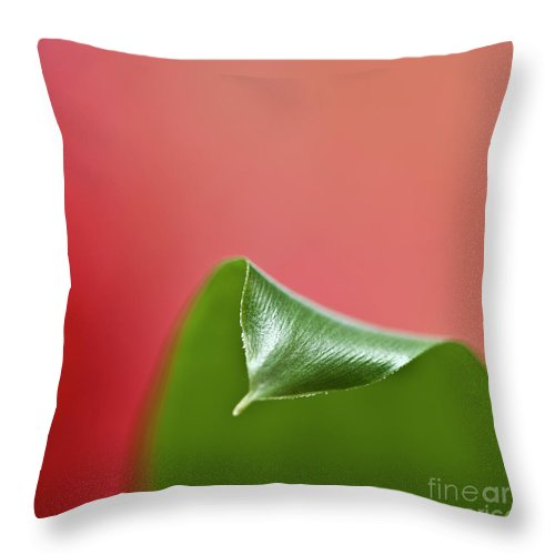 Heiko Throw Pillow featuring the photograph Green And Red by Heiko Koehrer-Wagner