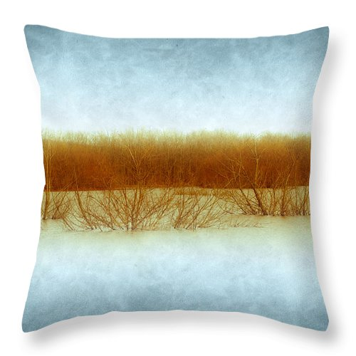 Green Bottom Throw Pillow featuring the photograph Green Bottom Swamp by Shane Holsclaw