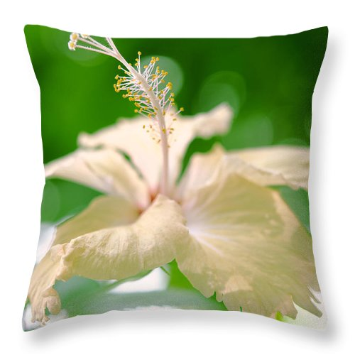 Hibiscus Throw Pillow featuring the photograph Green Bubble Dream by Jenny Rainbow