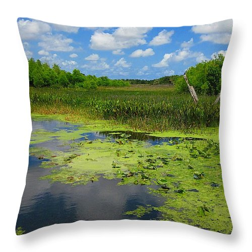 Green Cay Nature Preserves Throw Pillow featuring the photograph Green Cay Nature Preserve Beauty by MTBobbins Photography