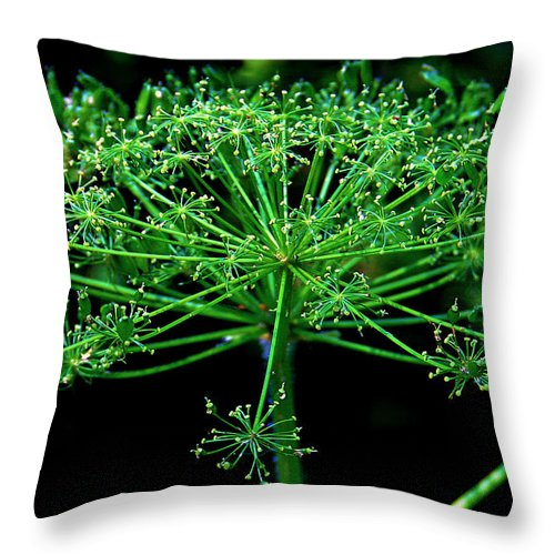Flower Throw Pillow featuring the photograph Green Frills II by Jeanette C Landstrom