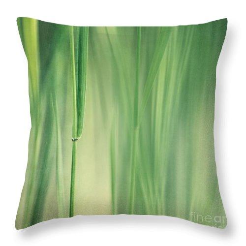 Grass Throw Pillow featuring the photograph Green Grass by Priska Wettstein
