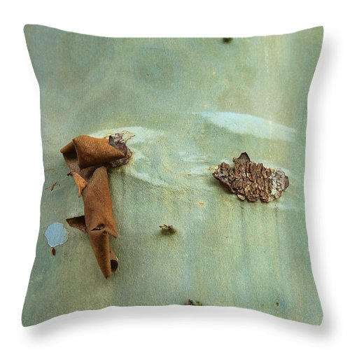 Green Outer Bark Throw Pillow featuring the photograph Green Outer Bark by Viktor Savchenko