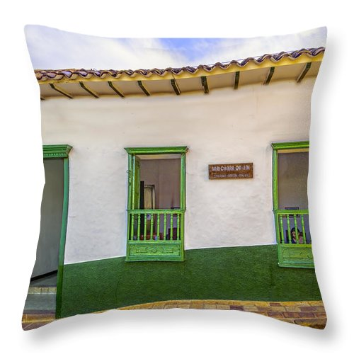 Arquitecture Throw Pillow featuring the photograph Green Trim by Maria Coulson