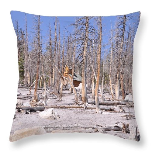 Greenless Trees Throw Pillow featuring the photograph Lonely Cabin by Scott Richards