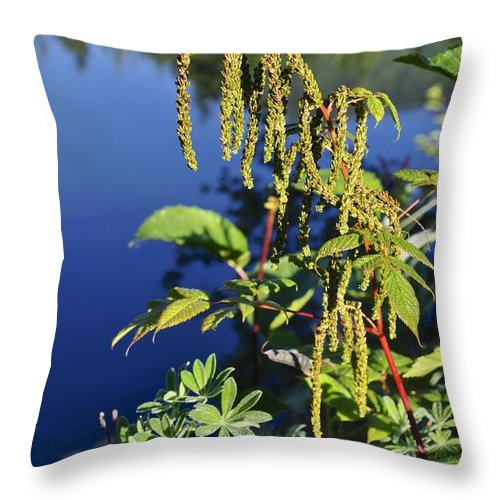 Green Throw Pillow featuring the photograph Greens by Cathy Mahnke