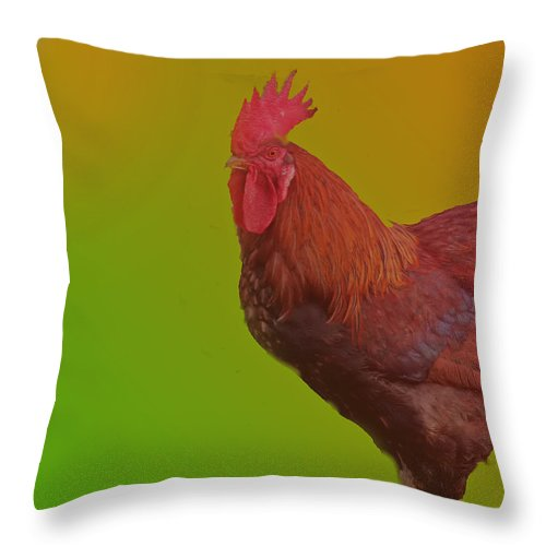 Rooster Throw Pillow featuring the photograph Greeting The Sun by Ian MacDonald