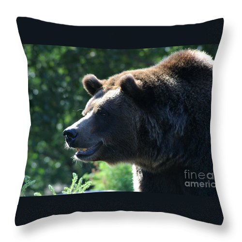 Animal Throw Pillow featuring the photograph Grizzly-7755 by Gary Gingrich Galleries