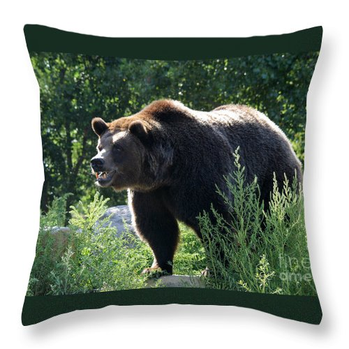 Animal Throw Pillow featuring the photograph Grizzly-7756 by Gary Gingrich Galleries