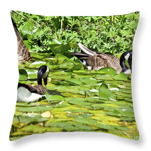 Portrait Throw Pillow featuring the photograph Groovy Meal by David Fabian