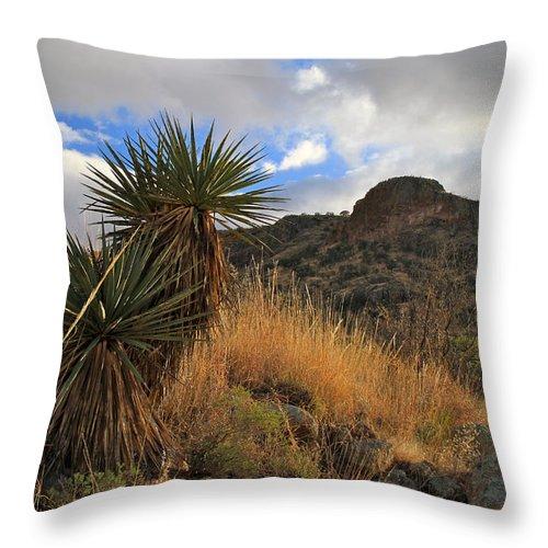 Arizona Throw Pillow featuring the photograph Grosvenor Hill Arizona by Ed Riche