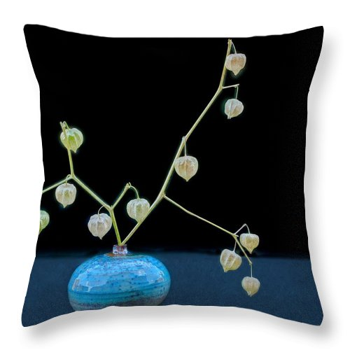 Vase Throw Pillow featuring the photograph Ground Cherry Still Life by Nikolyn McDonald