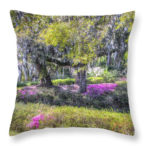 Azalea Throw Pillow featuring the photograph Grounds Of Middleton by Dale Powell